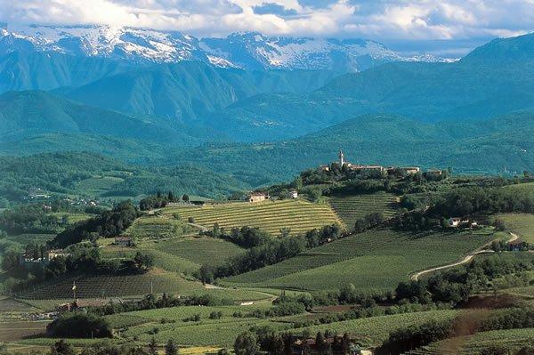 The landscape of the Collio DOC region