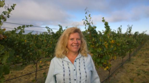 Mumm Napa Vineyard Manager Julie Nord July 28, 2016